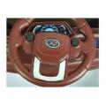 საბავშვო ელექტრო მანქანა ZHANLANG 6699 GREEN
